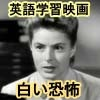 "English learning films ""white terror"" 110 minutes at the same time English + words and phrases translated subtitles, original video 640 x 480 (mp4)"